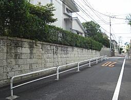 カルガモ坂2.JPG