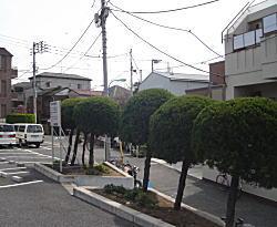 セメントの塀2.jpg
