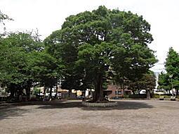上屋敷公園.jpg