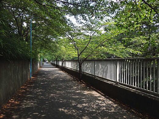 上落合の散歩道.JPG