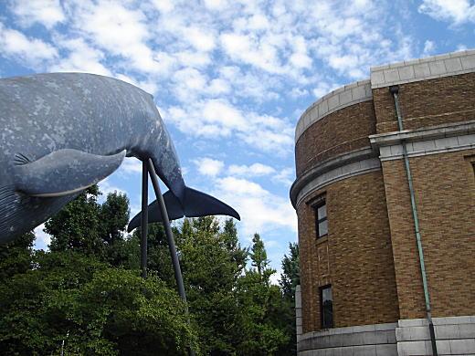 上野東京国立科学博物館.JPG