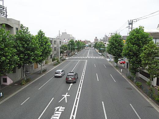 下落合みどり幼稚園歩道橋2.JPG