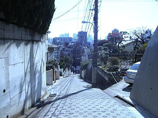 下落合眺望07.JPG