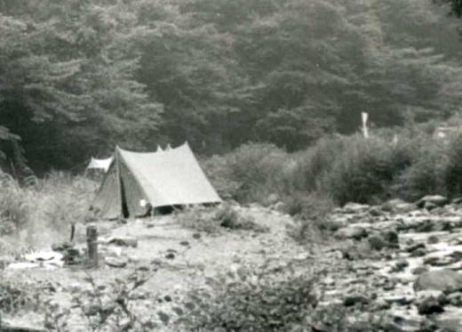 丹沢キャンプ1.jpg