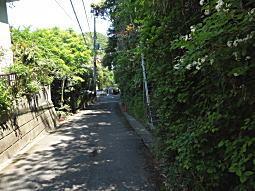 代官山山麓01.JPG