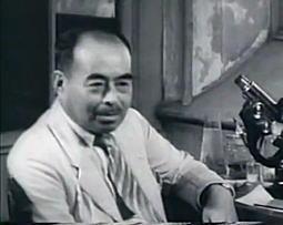 古畑種基1949.jpg