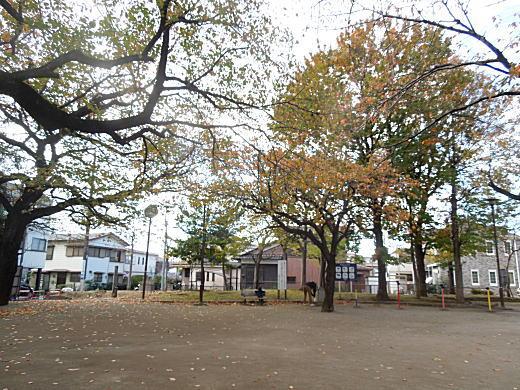 向原公園.JPG
