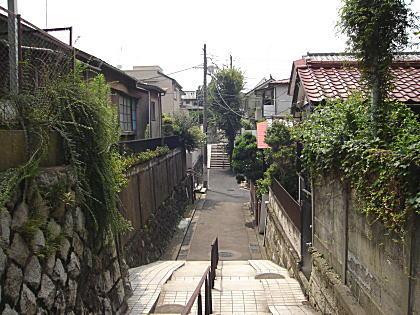 土塁跡(前谷戸).JPG