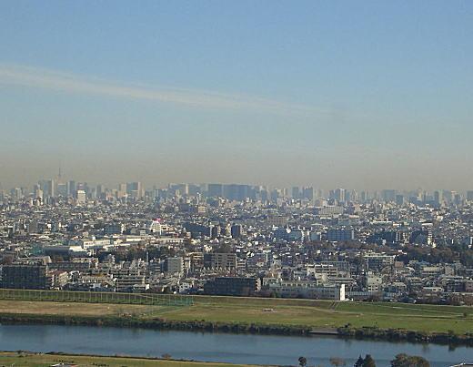 多摩川から都心を望む.jpg