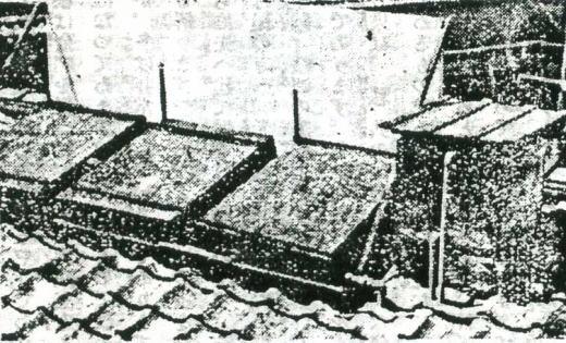 太陽熱湯沸器1925.jpg