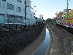 妙正寺川02.JPG