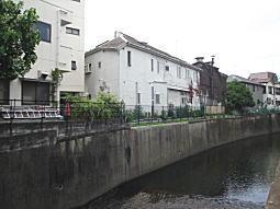 妙正寺川3.JPG
