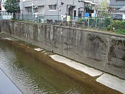 妙正寺川水車場跡界隈.JPG