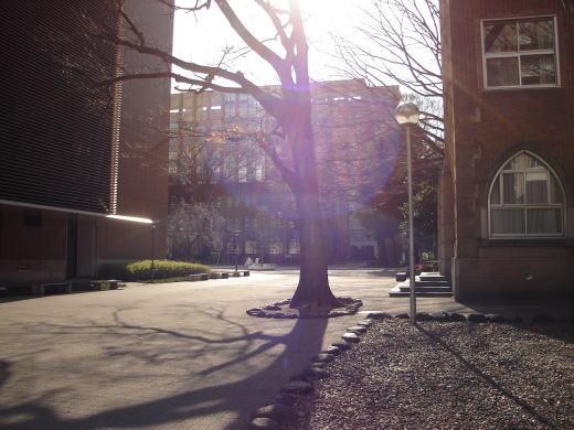 学習院キャンパス2.JPG