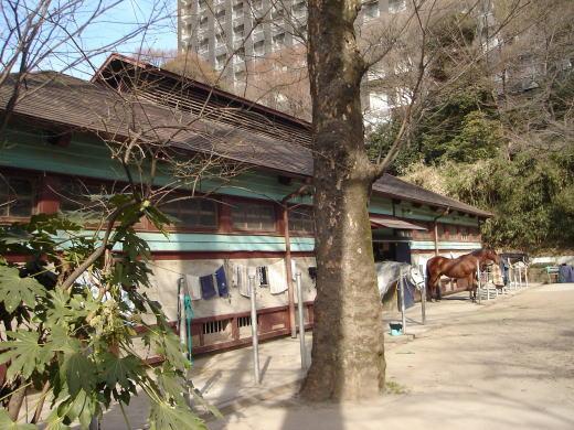 学習院馬場.JPG