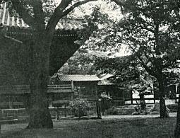 寛永寺1950.jpg