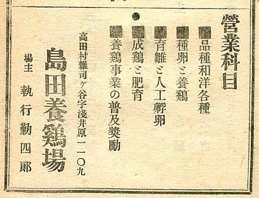 島田養鶏場広告.jpg