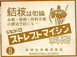 広告ストレプトマイシン1953.jpg