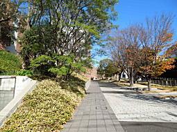 徳川慶喜邸跡4.JPG