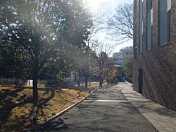 徳川慶喜邸跡5.JPG