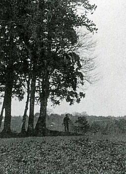 戸塚村諏訪1909.jpg
