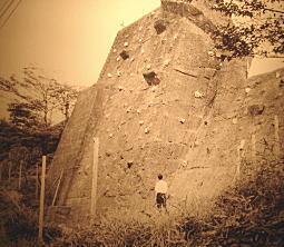 戸山ヶ原1963.JPG