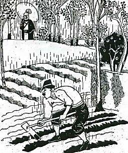 新住民の農業.jpg