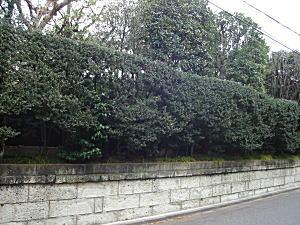 有田邸2008.jpg