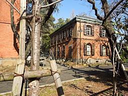 東京美術学校02.JPG