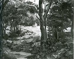 松下春雄夏木立1928.jpg