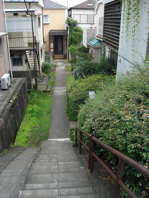 林泉園1.JPG