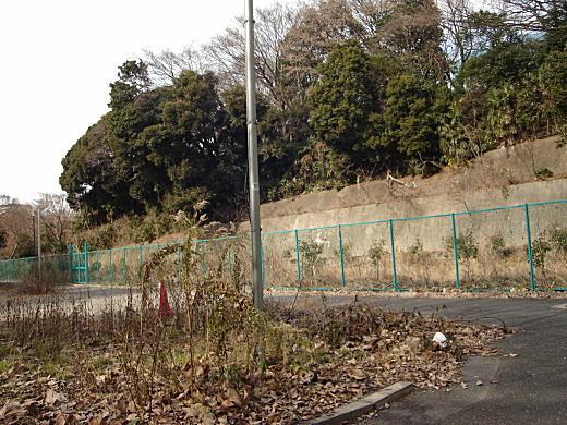 根岸大山05.JPG
