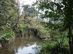 椿山1.JPG