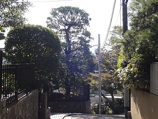 権兵衛坂.JPG