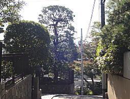 権兵衛山.JPG