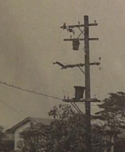氷川線1941.jpg