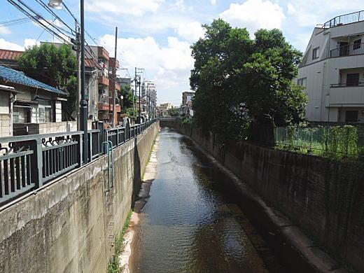 江戸小紋5.JPG