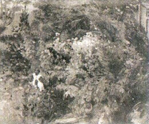 清水多嘉示「青い鳥の庭園」OP018.jpg