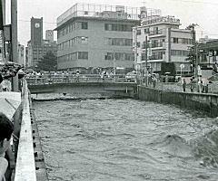 田島橋1981.jpg