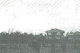画家たち凧揚げ19280101.jpg
