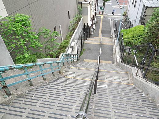 目白台瓢箪型台地7.JPG