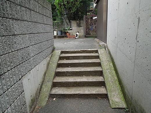 目白林泉園庭球部4.JPG