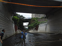神田川水洗い1.JPG