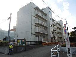 科学研究所03.JPG