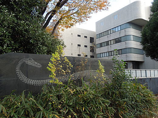 科学研究所06.JPG
