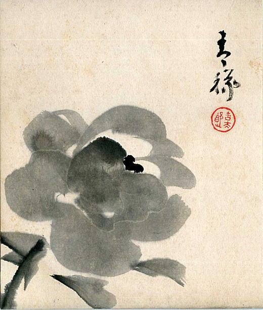 笠原吉太郎「牡丹」昭和初期.jpg