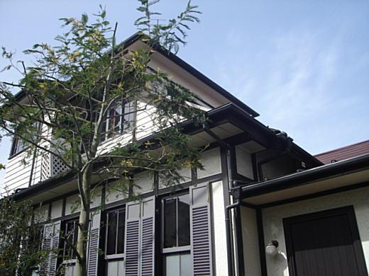 第一文化村渡辺邸.JPG