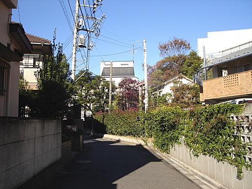 第三文化村2.JPG