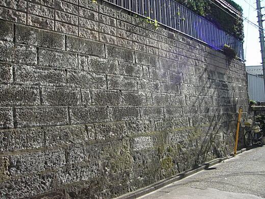 第四文化村擁壁.JPG
