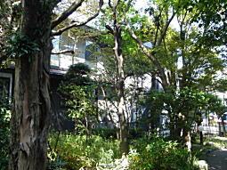 舟橋庭園4.JPG